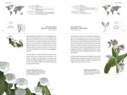 the book of orchids a life size guide to six hundred species from