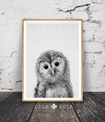 owl print woodlands nursery wall art printable poster black