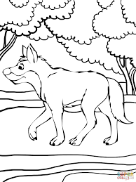 dingo in the forest coloring page free printable coloring pages
