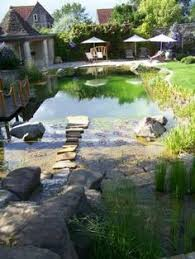 Backyard Swimming Ponds by Webber Natural Commercial Swimming Pool Bio Nova In Minneapolis