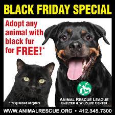 home depot black friday dog 38 best black friday images on pinterest black friday adoption