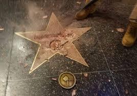 a golden toilet next to trump u0027s golden star