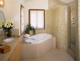 bathroom design ideas walk in shower 1000 ideas about small