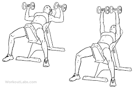 How To Do Dumbbell Bench Press Incline Dumbbell Bench Press Illustrated Exercise Guide