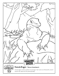 komodo dragon coloring animals town animal color sheets