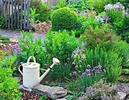 how to grow a herb garden u2013 design ideas for outdoors and indoors