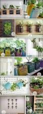 Indoor Herb Garden Ideas by 15 Phenomenal Indoor Herb Gardens Metal Tins Towels And Plumbing