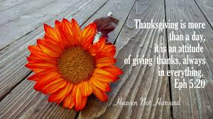 thanksgiving attitude more than a day heaven not harvard