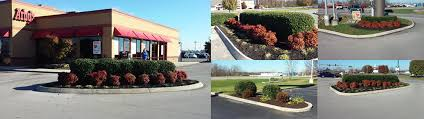 affordable tree service crossville tn index total outdoor services