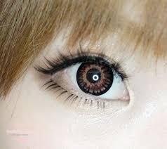 66 circel lenses images bearded iris eye