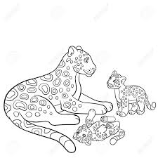 coloring pages mother jaguar with her little cute cubs royalty