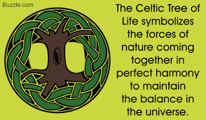 explaining the hidden meaning of the celtic tree of life