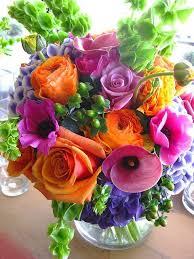Flowers Near Me - top 25 best rainbow flowers ideas on pinterest rainbow roses