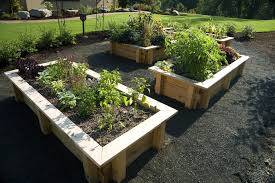 Garden Tips And Ideas Gardening Tips Ideas Projects At Home