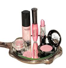 best makeup kits for makeup artists best pink makeup kit for all skin tones by