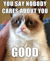Nobody Cares Memes - nobody cares meme on imgur