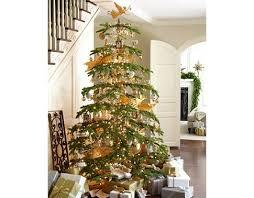 silvertip fir tree princess decor