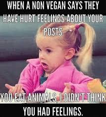 Memes Vegetarian - didn t think you had feelings follow sophieeleana lol
