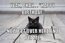 Happy Birthday Dog Meme - best happy birthday meme 1birthday greetings