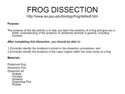 frog dissection discussion