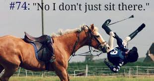 Horse Riding Meme - 10 eventing memes that will make any equestrian laugh out loud