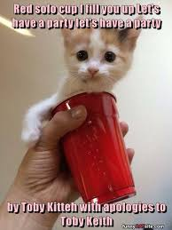 Red Solo Cup Meme - red solo cup i fill you up let s have a party let s have a party