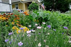 13 practical edible landscaping ideas perfect for every garden
