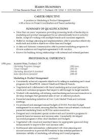 resume samples professional summary resume career summary examples what to include in a resume