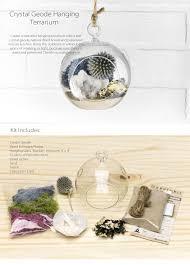 crystal geode hanging terrarium apollobox