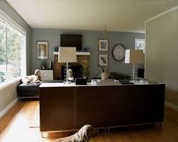 Kitchen Feature Wall Ideas by Living Room Feature Wall Colour
