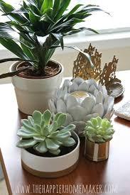 planter for succulents diy pvc pipe succulent planters the happier homemaker