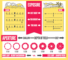 Tip Sheet For Your Creative 15 Of The Best Sheets Printables And Infographics For