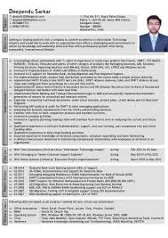 Control M Resume Top Critical Essay Proofreading Website For Christopher