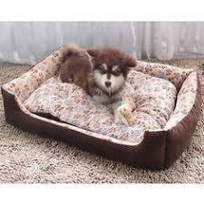 Dog Blankets For Sofa by Big Dog Blankets Dog Idea Pinterest Dog Blanket Blankets