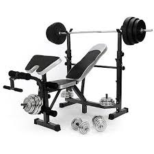 Weight Bench Package Home Multi Gym Weight Bench Arm Leg Curl Equipment Fitness