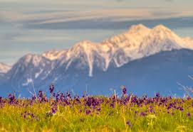 Montana mountains images Mission mountains montana the national wildlife federation blog jpg