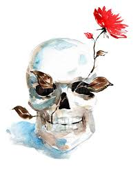 skull and flower stock illustration illustration of shape 23843639