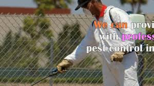 pest control one step to remove pests from your house youtube