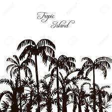 tropical forest rain forest jungle vintage template palm
