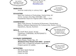 create a simple resume eliolera com