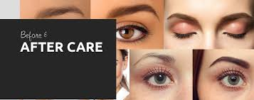 tampa permanent makeup services premier cosmetic solutions