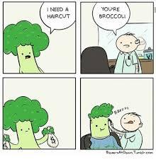 Meme Generator Tumblr - need a haircut you re broccoli 2 blazers at dawn tumblrcom haircut