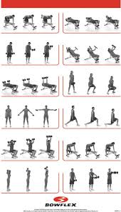 bench routines weight bench exercises chart images chart exle ideas