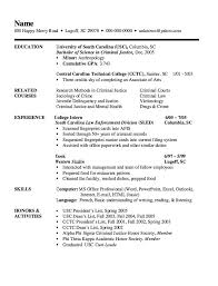 Objective For Law Enforcement Resume The 25 Best Examples Of Resume Objectives Ideas On Pinterest