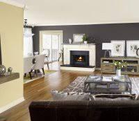 wall paint colors catalog home colour house painting images color