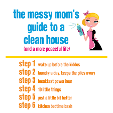 Clean My House The Messy Mom U0027s Guide To A Clean Er House And A More Peaceful Life