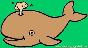 whale coloring page 1 coloring page free whale coloring pages