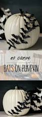 White Pumpkin Decorations Halloween Bats Flying Across A Pumpkin