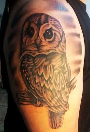 love is pain ta funny owl by tim love is pain tattoo berlin