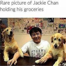 Asian Dog Meme - asian american representations in media musings of a womanist
